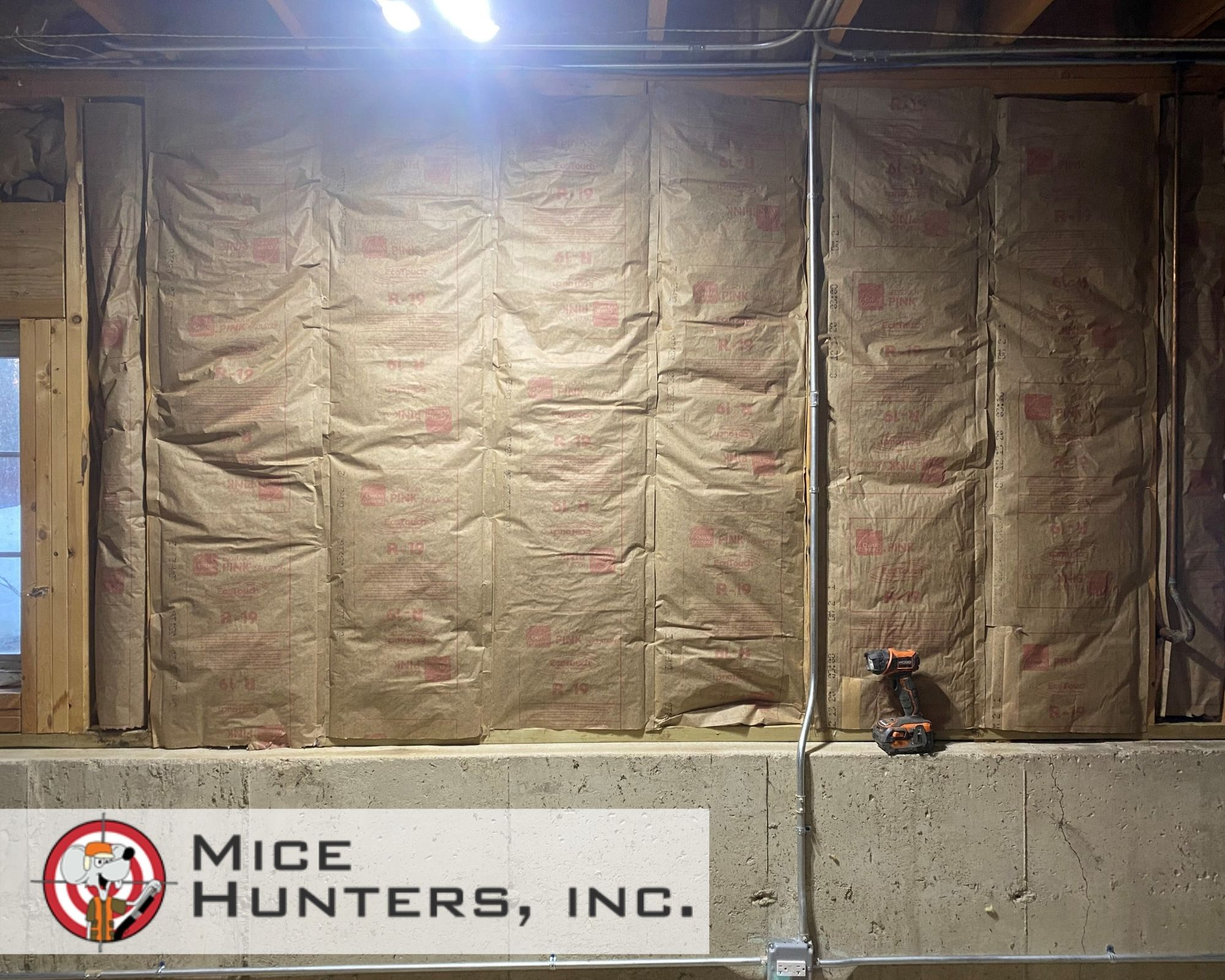 mice love insulation cleanup and replace_1